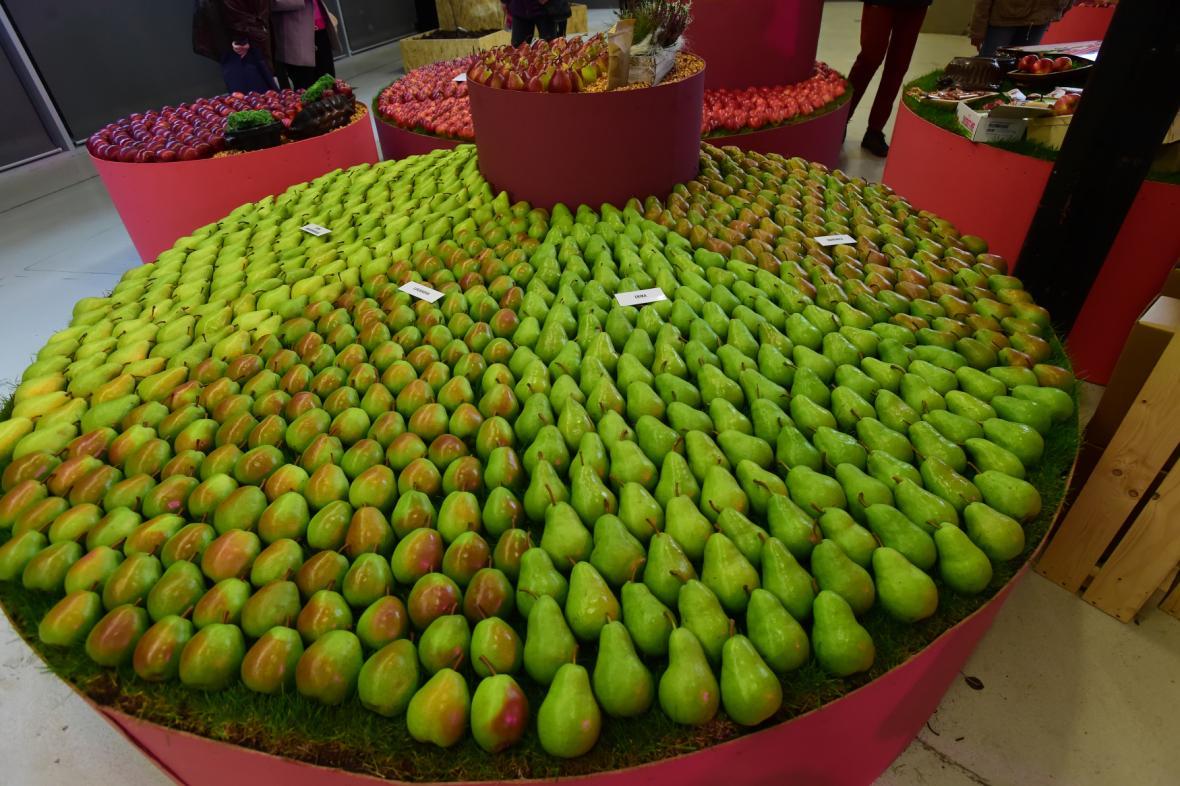 Podzimní výstava ovoce a zeleniny Flora Olomouc