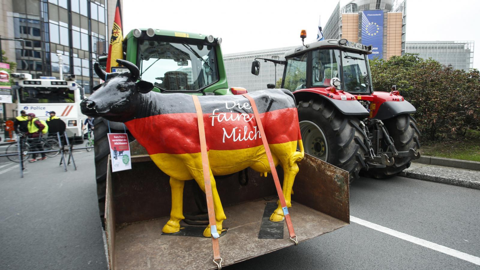 Zemědělci v Bruselu protestují kvůli mléku