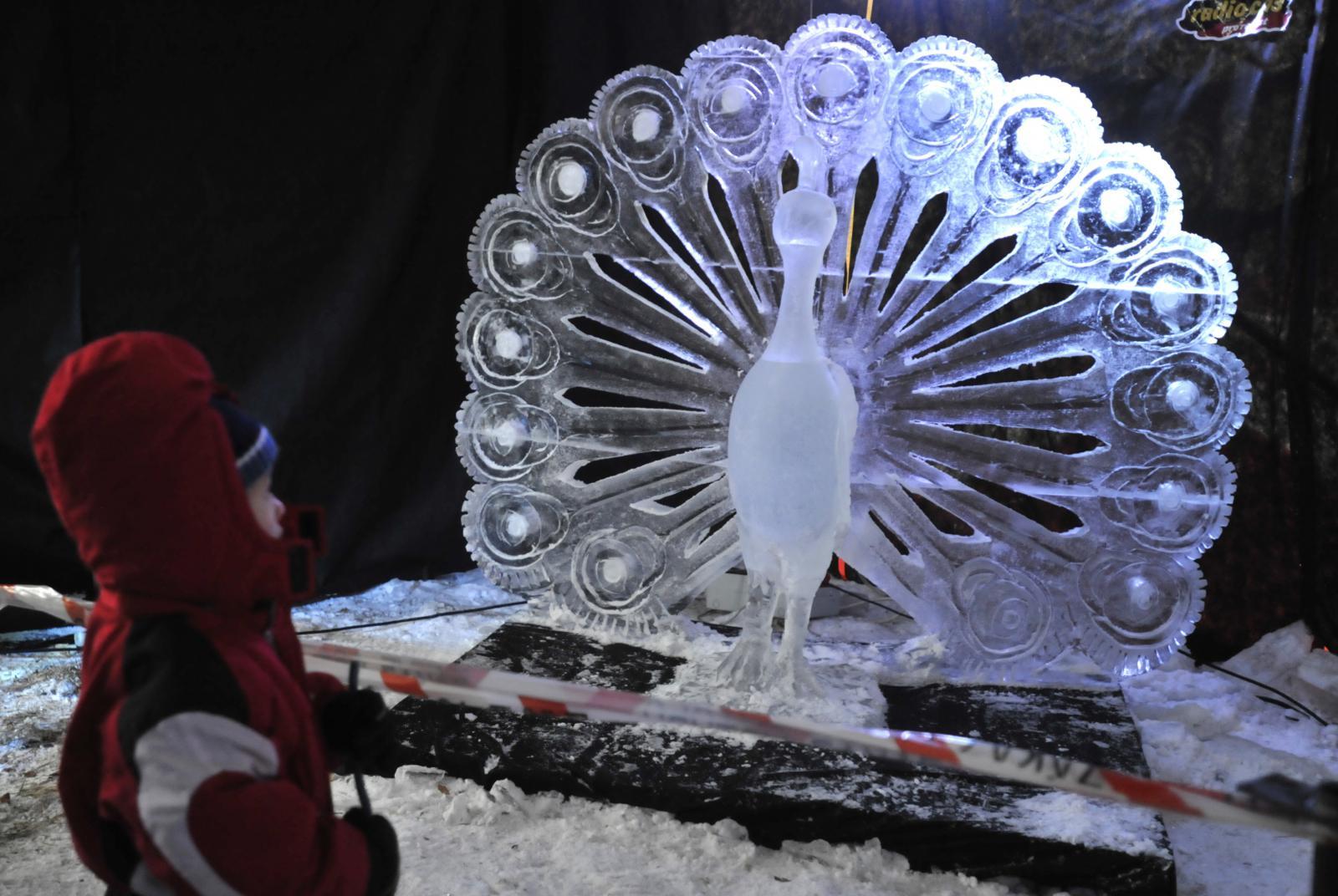 Ledový Páv od sochaře Jakuba Vlčka
