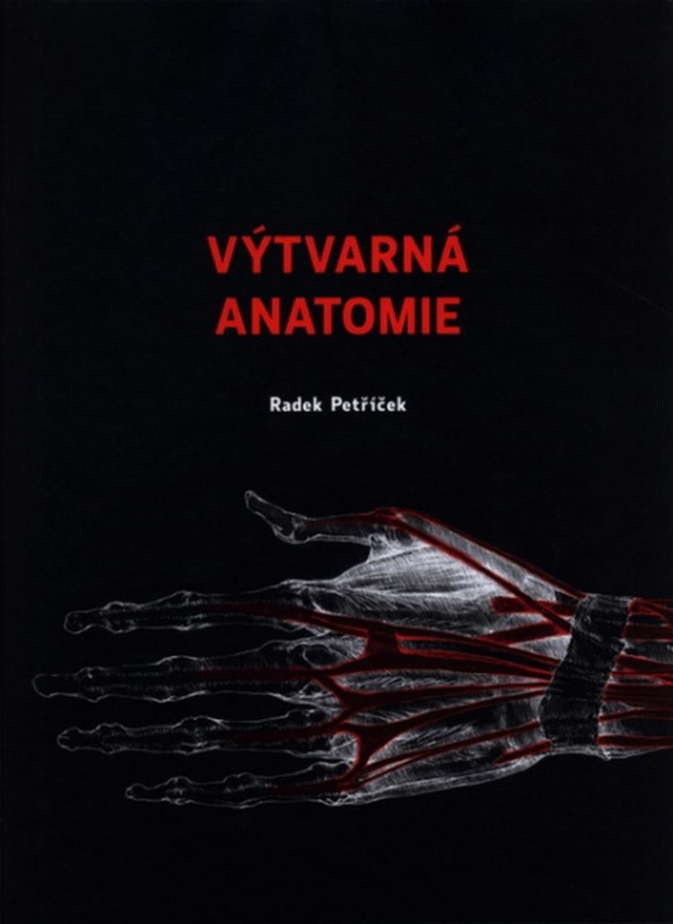 Výtvarná anatomie