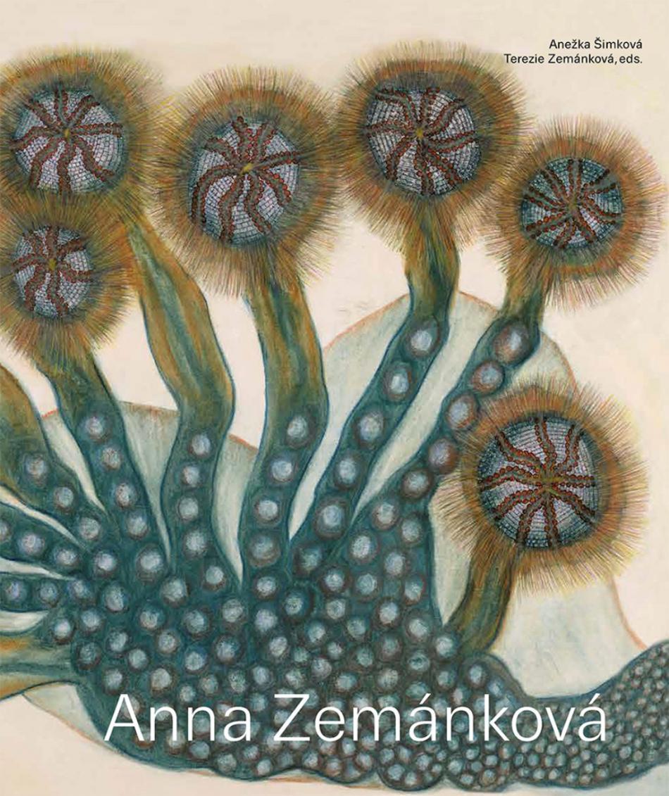 Publikace Anna Zemánková