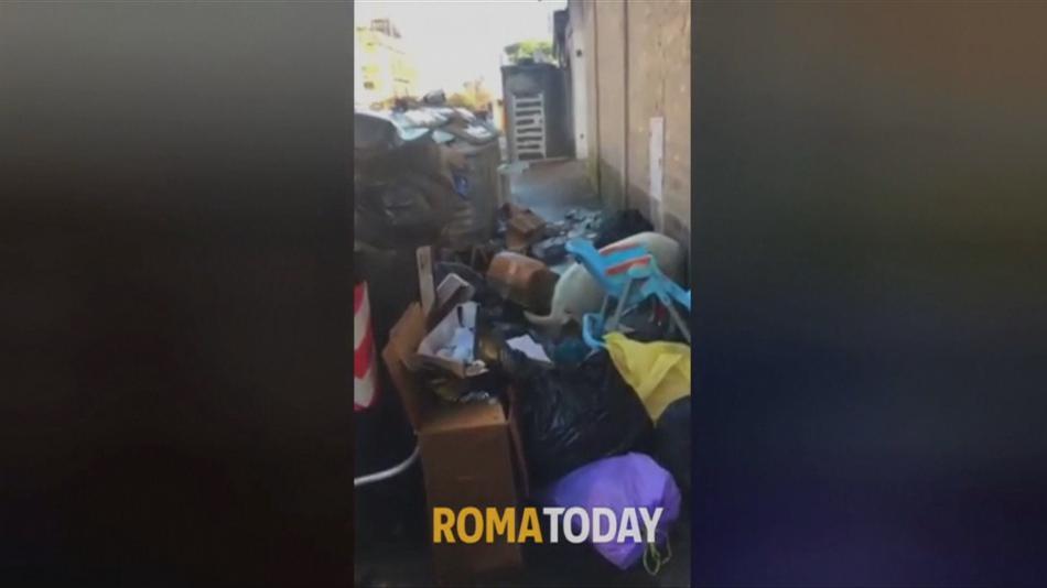 Prase hoduje na odpadcích v ulicích Říma