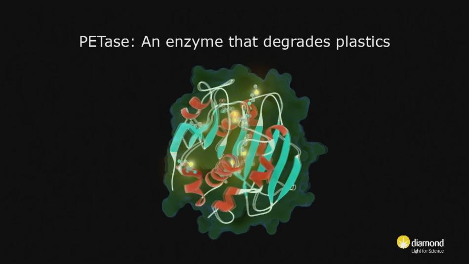 Enzym PETase