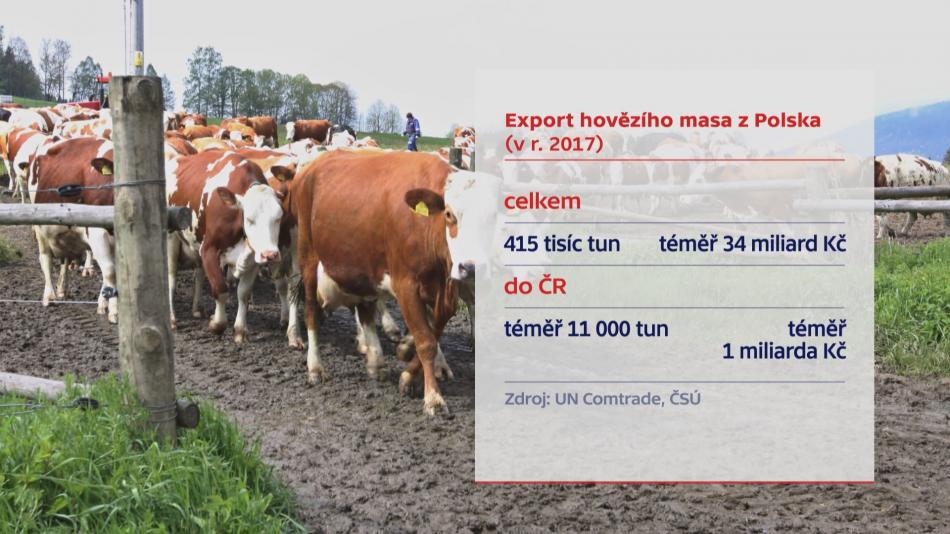 Export hovězího masa z Polska (v r. 2017)